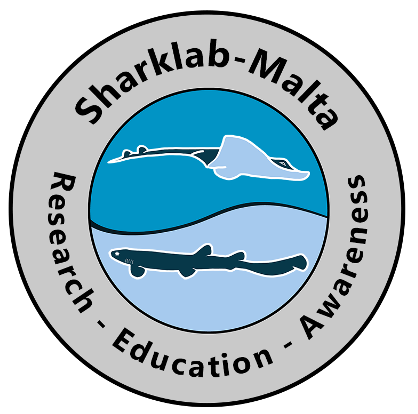 Home - Sharklab-Malta