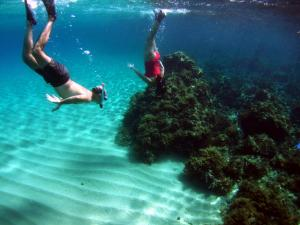 Guided Snorkel Pic6